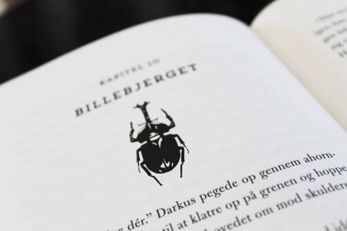 Billedrengen - M.G. Leonard - Børnebøger